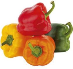 Paprika Bunt