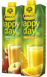 Rauch Happy Day Fruchtsaft