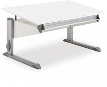 Moll Schreibtisch Bandit 2021