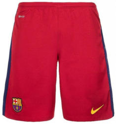 NIKE Herren Heimshort FC Barcelona Replica