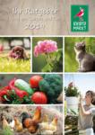 Kiebitzmarkt Ihr Ratgeber rund um Garten und Tier - bis 31.08.2019