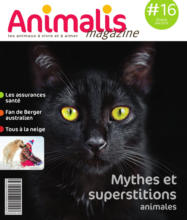Magazine #16: Mythes et superstitions animales