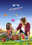 Würth-Hochenburger - Baustoffniederlassung Würth-Hochenburger Gartenkatalog - bis 16.01.2020