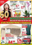 Wreesmann Wochen Angebote - bis 22.03.2019