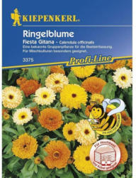 Kiepenkerl Ringelblume Fiesta Gitana Profi-Line