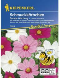 Kiepenkerl Schmuckkörbchen Sonata, Mischung Profi-Line
