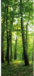 Türfototapete Wald