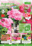 Gartencenter Augsburg Wochenangebote - bis 05.05.2019