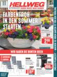 HELLWEG Baumarkt Wochenangebote - bis 18.05.2019