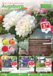 Gartencenter Augsburg Wochenangebote - bis 26.05.2019