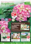 Gartencenter Augsburg Angebote - bis 09.06.2019