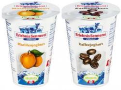 ERLEBNIS SENNEREI ZILLERTAL Fruchtjoghurt