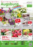 Gartencenter Augsburg Wochenangebote - bis 23.06.2019