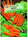 BayWa Bau- & Gartenmärkte Möhren Sortiment, 3 Sorten, 5 m Saatband