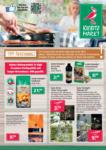 Kiebitzmarkt Angebote - bis 12.07.2019