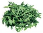 Lidl Österreich Rucola-Salat - bis 27.01.2020