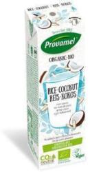 Reis-Kokos Drink