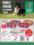 Kiebitzmarkt Aktuelle Angebote - bis 02.09.2019