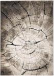XXXLutz St. Florian Webteppich Wild Oak