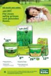 Pflanzen-Kölle Gartencenter Rasenpflege - bis 04.03.2020
