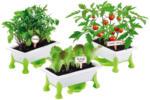 Möbelix Kinder-Pflanzset Grüner Daumen, Gemüse