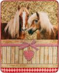 Möbelix Kuscheldecke Pferde Romantik