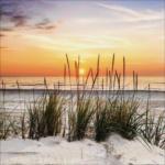 Möbelix Keilrahmenbild Sonnenuntergang Am Strand