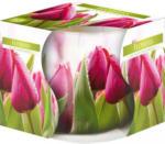 Möbelix Kerze Im Glas Blumen Grün, Weiß, Violett