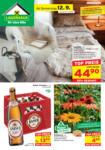 Salzburger Lagerhaus Lagerhaus Salzburg - Flugblatt ab 12.9. - bis 21.09.2019