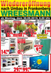 Wreesmann Wochenangebote - bis 04.10.2019
