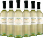 WEIN & CO Pinot Grigio 2018 6er Set - bis 29.10.2019