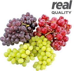 Italien Tafeltrauben, rot, kernlos Kennzeichnung siehe Etikett, jede 500-g-Schale