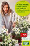 Pflanzen-Kölle Gartencenter Wochenangebot - bis 13.11.2019