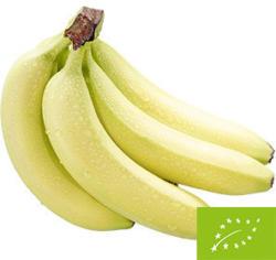 Bio Bananen je 1 kg
