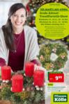 Pflanzen-Kölle Gartencenter Wochenangebot - bis 27.11.2019