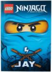 "Ernsting's family - EKZ LEGO Ninjago Buch ""Jay"""