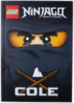 "Ernsting's family - EKZ LEGO Ninjago Buch ""Cole"""