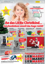 Hagebau Lieb Markt Flugblatt - gültig bis 31.12.