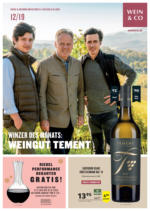 WEIN & CO Dezember Zeitung