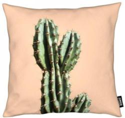 Dekokissen, »Cactus 01«, Juniqe