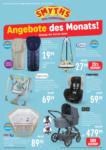 Smyths Toys Monatsposter - bis 31.12.2019