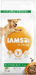 IAMS Trockenfutter für große Hunde, Adult, Vital Lamm