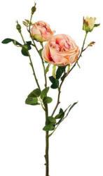 Rose Elke Hellrosa