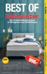 Hofmeister Aktuelle Angebote - bis 30.01.2020