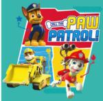 POCO Keilrahmenbild ca. 35 x 35 cm Call the Paw Patrol