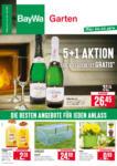 BayWa Bau- & Gartenmärkte Wochenangebote - bis 01.02.2020