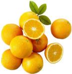 real Spanien Orangen Kennzeichnung siehe Etikett, jedes 1,5-kg-Netz - bis 01.02.2020