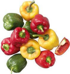 Spanien Paprika Mix Kennzeichnung siehe Etikett, jede 500-g-Packung