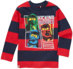 Ernsting's family LEGO Ninjago Langarmshirt mit Blockstreifen