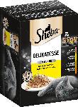 dm-drogerie markt Sheba Nassfutter für Katzen, Delikatesse in Gelee, Geflügel Variation, 12x85g